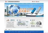 深圳网站建设案例:加密U盘网站建设